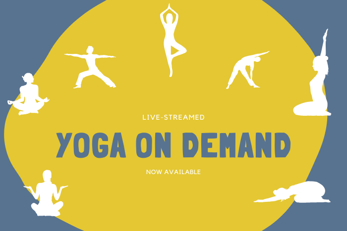 Live-Stream Classes – Now Available On Demand!